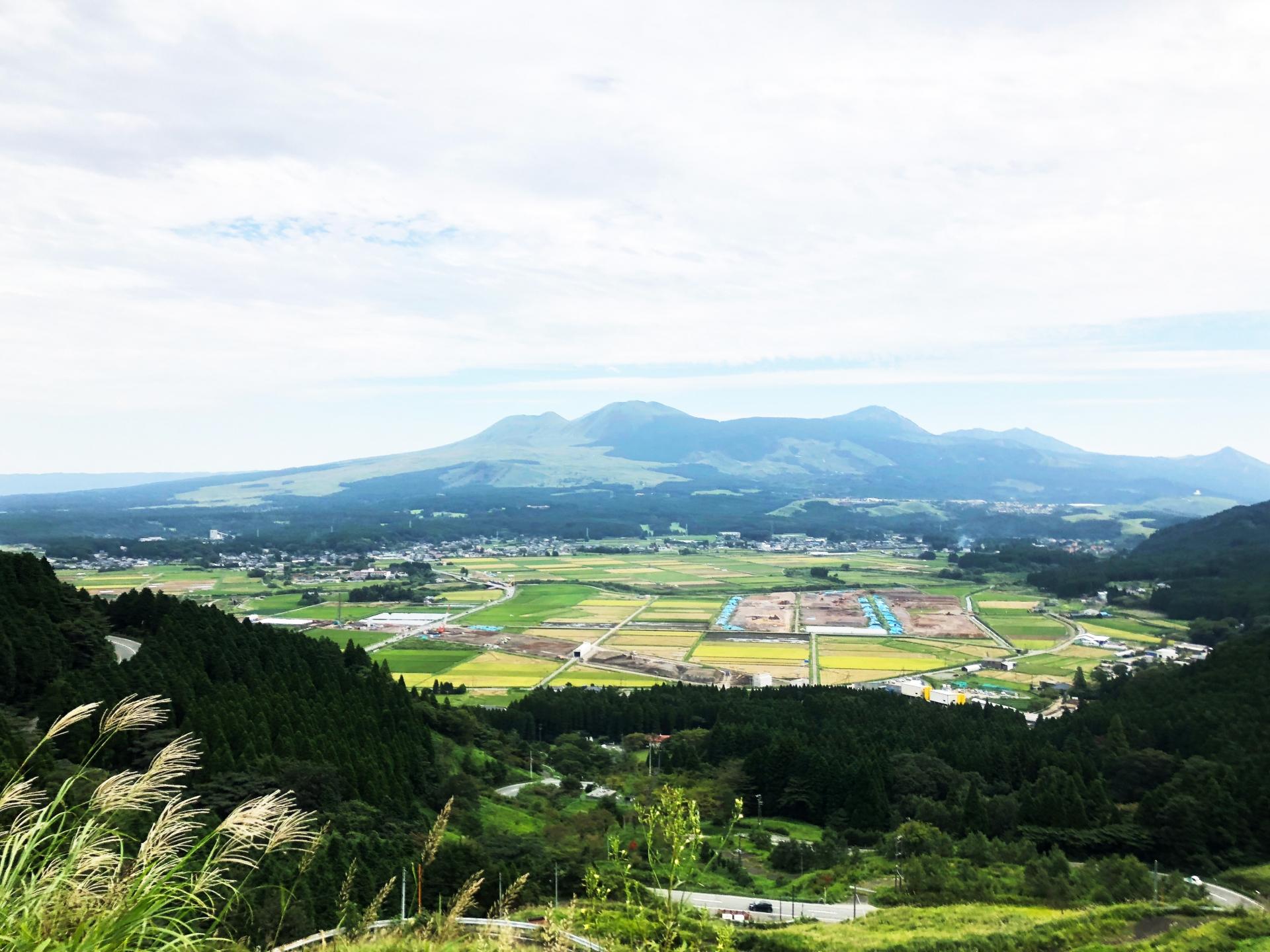 熊本県内で処分に困るお仏壇・仏具の処分費用相場~最も安く処分する方法