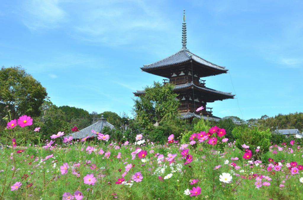 奈良県内で処分に困るお仏壇・仏具の処分費用相場~最も安く処分する方法