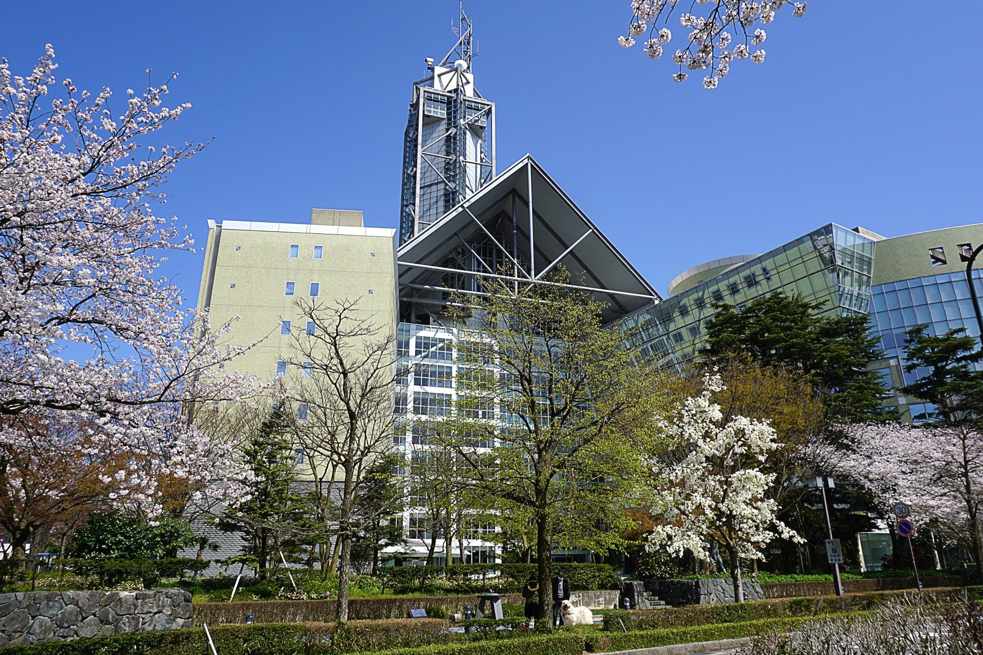 富山県内で処分に困るお仏壇・仏具の処分費用相場~最も安く処分する方法