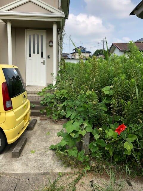 のび放題の雑草で手を付けられなかったお庭も、見違えるほどきれいになりました。