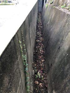 【北九州市】伐採後の枝の回収☆素早い対応で敷地内が片付きご満足いただけました。