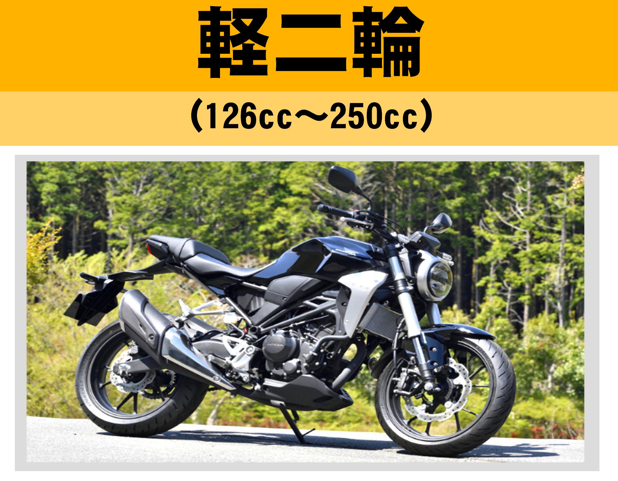 (2)軽二輪(126cc~250cc)の廃車手続き