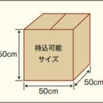 死亡動物を入れる箱のサイズ