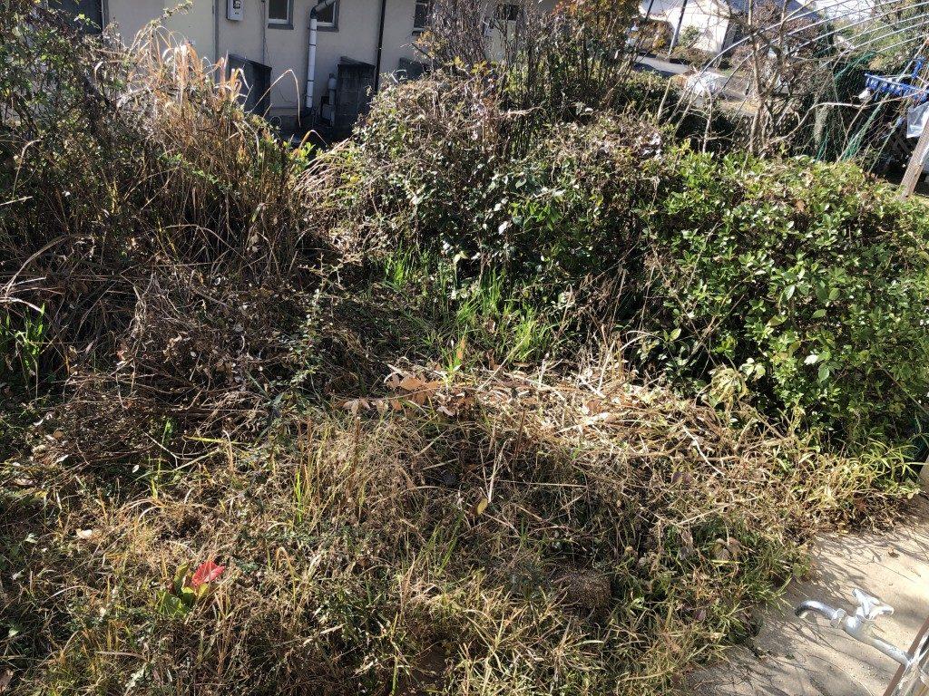 【宇城市松橋町】庭木の伐採、草刈りのご依頼☆雑草が茂っていたお庭がスッキリと変わり、お客様のご満足いただけました!