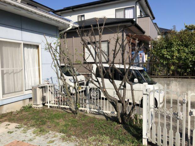 【大分市けやき台】庭木の剪定☆伸びすぎてしまった庭木をきれいに剪定し、喜んでいただけました!