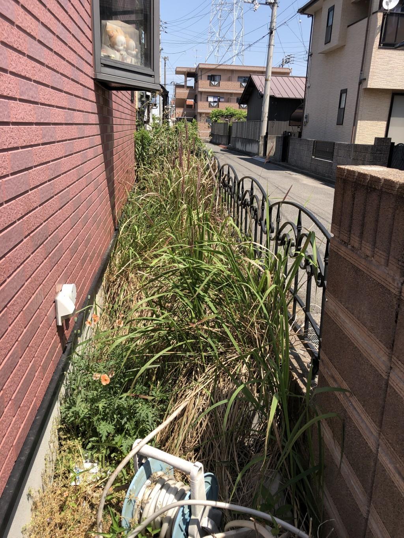 【西条市樋之口】草刈りのご依頼☆迅速な対応にご満足いただけました