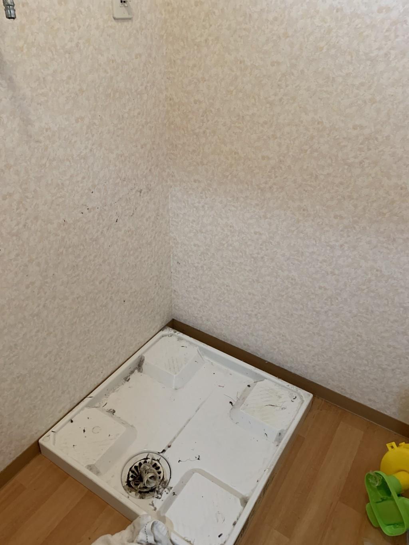 【宮崎市波島】ソファーや洗濯機などの出張不用品回収・処分ご依頼