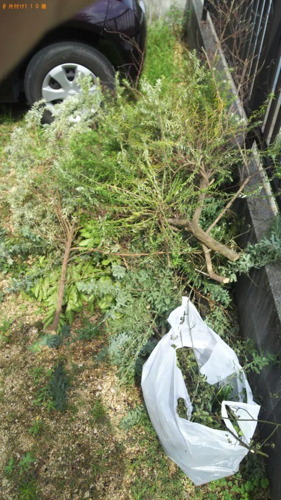 【岡山市東区】伐採したミモザの木とシングルベッドマットレスの回収・処分 お客様の声