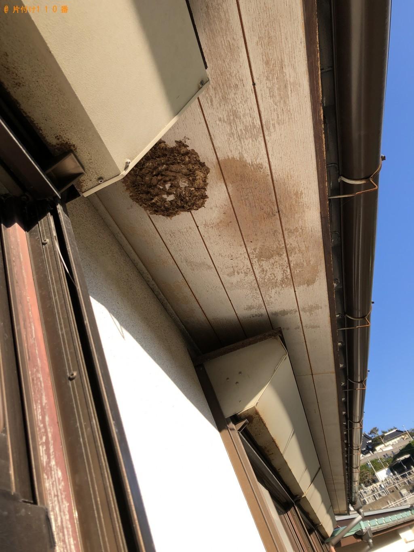 【下関市椋野町】スズメバチの駆除 お客様の声