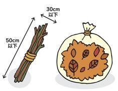 落ち葉は市販の透明ゴミ袋に入れて出す。
