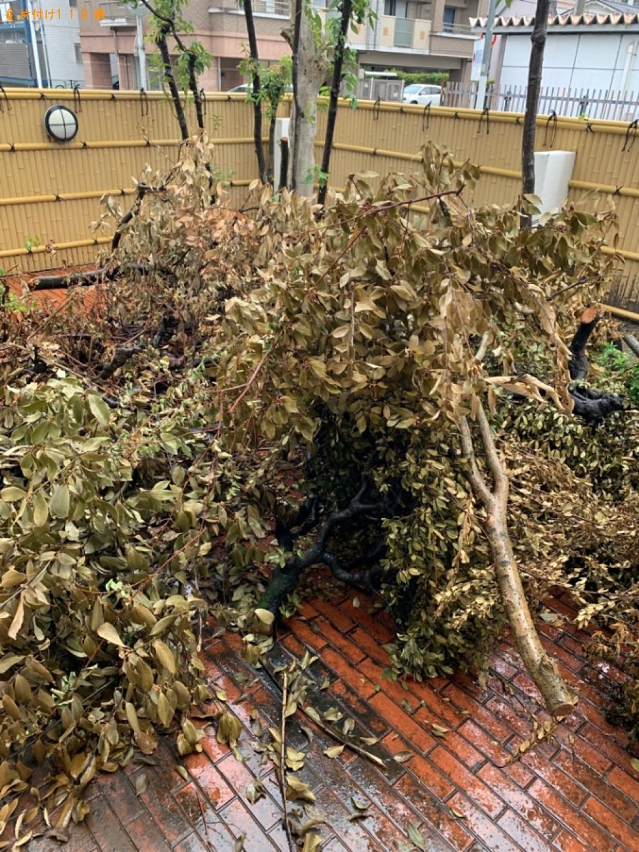 【福岡市東区】剪定ゴミの出張不用品回収・処分ご依頼 お客様の声